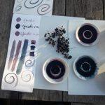 Liguster Tinte