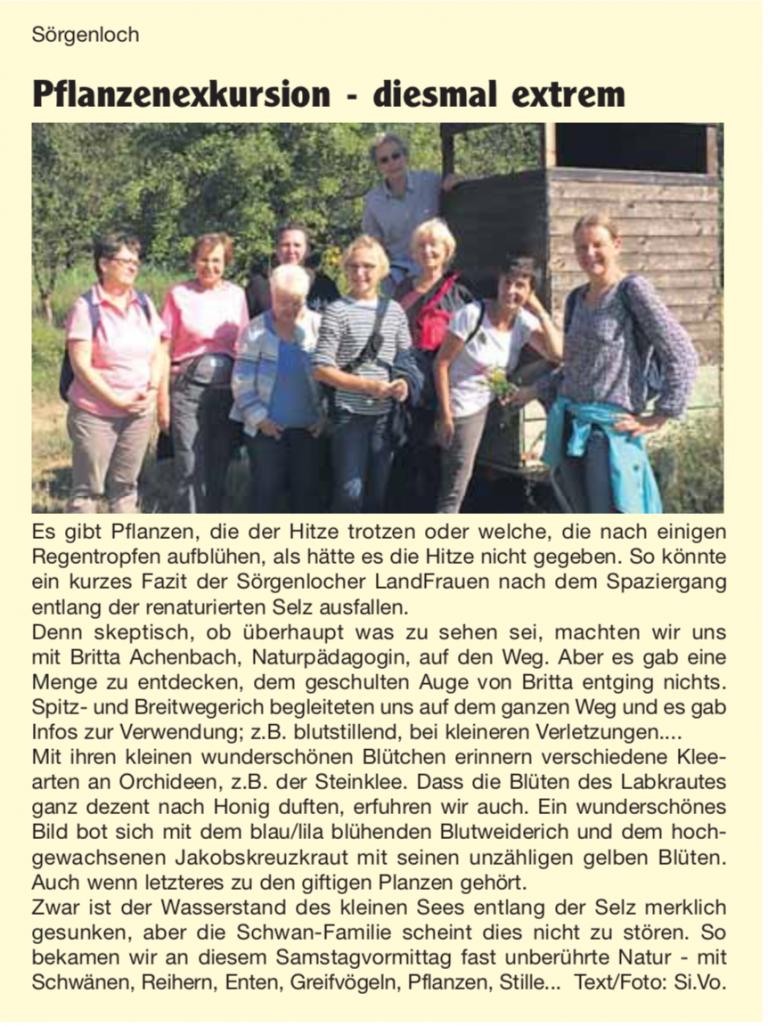 Nachrichtenblatt VG-Nieder-Olm Nr.33 / 2018